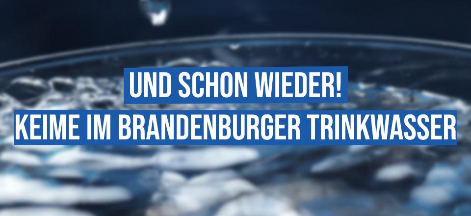 Schon wieder! Keime in Brandenburger Trinkwasser