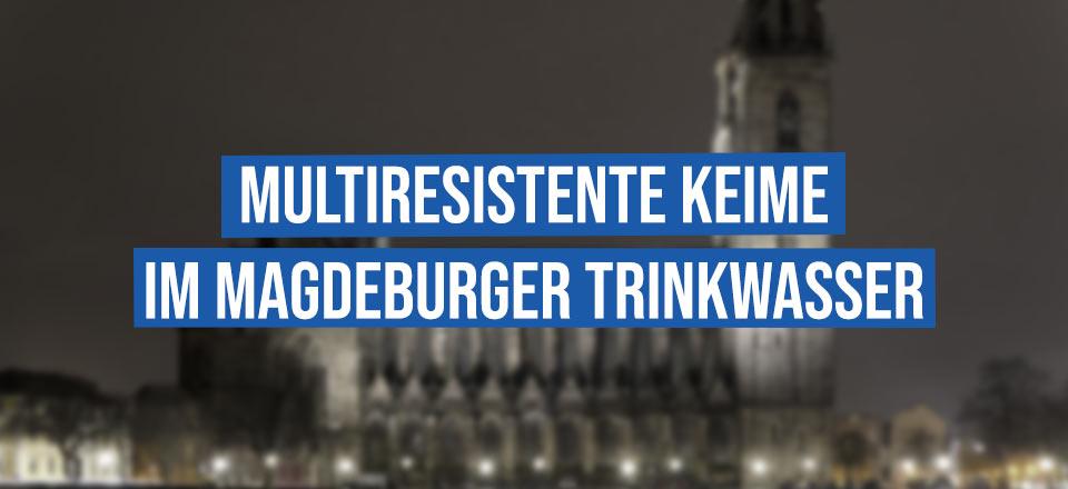 Multiresistente Keime im Magdeburger Trinkwasser