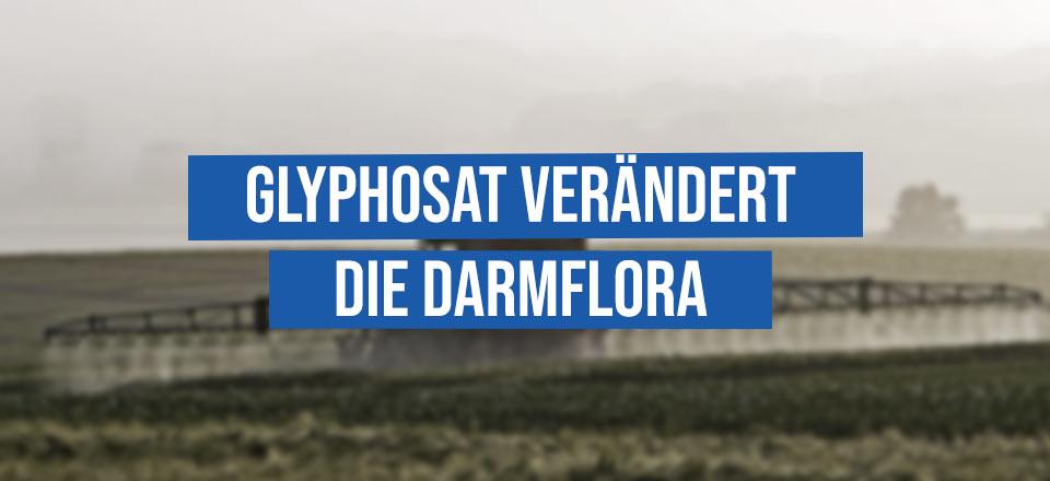 Glyphosat verändert die Darmflora